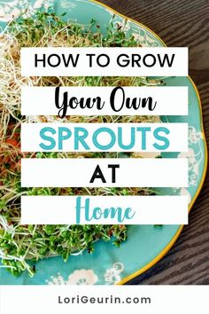 Learn how to grow sprouts from home in this quick and easy tutorial and video. Sprouts are fun and easy to grow and so nutritious to eat. You can grow broccoli, mung bean, alfalfa, and other types of sprouts using trays or Mason jars.    #howtogrowsprouts #sprouts #broccolisprouts #growsproutsindoors #growsproutsinatray #microgreens Alfalfa Seed, Alfalfa Sprouts, Sprouts Salad, Broccoli Sprouts, Stress Management Course, Growing Sprouts, Good Sources Of Calcium, Smashed Avocado