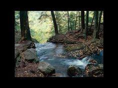 Massachusetts by Arlo Guthrie