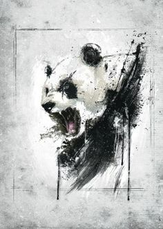 panda cool animal angry awesome black white