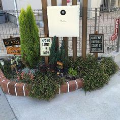 Garden Styles, My House, Sidewalk, Interior, Green, Nature, Flowers, Gardening, Home Decor