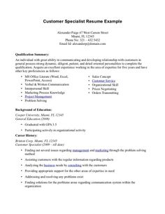 professional summary resume examples customer service - Resume Templates For Customer Service