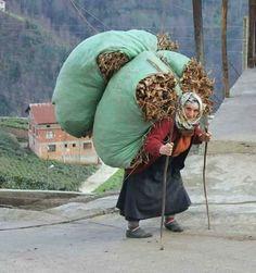 Un ballot, ça va ( ou pas !), deux, bonjour les dégâts ! / An elder with a too heavy load !
