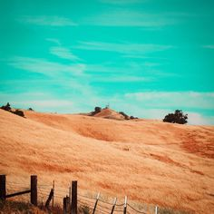 Is teal a real deal? Teal gives an appeal to feel a bit unreal. Summer Sky, Mountain S, Teal, California, Adventure, Feelings, Nature, Instagram, Naturaleza