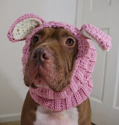 Cutest thing ever!!! Dog Snood Pink Rabbit for Large Breeds  by courtanai on Etsy, $35.00