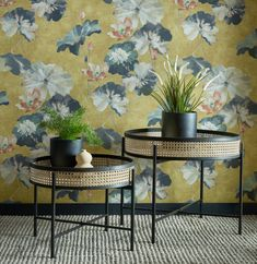 Yellow in décor is happy and chic! Yellow wallpaper dresses your home in sunny hues of optimism, providing an unexpectedly stylish compliment to white, neutrals, wood, and other colors. Wallpaper Size, Wallpaper Samples, New Wallpaper, Under The Tuscan Sun, Gold Background, Water Lilies, Lily, Wall Decor, Honey