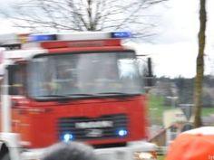 Hilferufe von Papagei alarmieren Feuerwehr und Polizei http://www.feuerwehrleben.de/hilferufe-von-papagei-alarmieren-feuerwehr-und-polizei/ #feuerwehr #firefighter