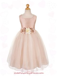 love! http://www.cuteflowergirldresses.com/flowergirldress/index.php?route=product/product=tulle_id=0_id=462