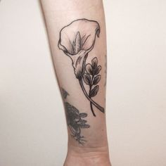 26 sweet calla lily tattoo creative fan owls pinterest calla rh pinterest com simple calla lily tattoo simple calla lily tattoo
