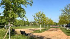 Parc de la Saussaie-Pidoux à Villeneuve-Saint-Georges - Bancs, boulots et skatepark