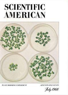 Scientific American - July '68 Magazine Cover Design, Magazine Covers, Scientific American Magazine, Decorative Plates, Science