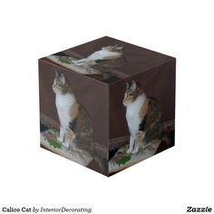 Shop Calico Cat Cube created by InteriorDecorating. Cat Cube, Photo Cubes, Decorative Boxes, Display, Cats, Pictures, Beautiful, Design, Home Decor
