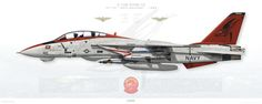 AIRFIGHTERS.COM - Grumman F-14 Tomcat
