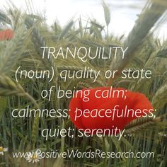 ... state of being calm; calmness; peacefulness; quiet; serenity. Tranquility