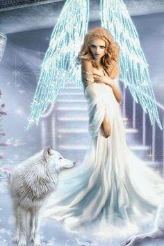 Angel girl and wolf Wolf Images, Wolf Pictures, Moving Pictures, Fairy Pictures, Angel Pictures, Beautiful Gif, Beautiful Fairies, Angels Among Us, Angels And Demons