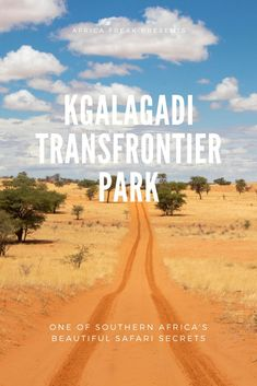 Kgalagadi Transfrontier Park is an escapist wilderness of sand dunes, desert-adapted lions and migratory herds. It is one of Southern Africa's beautiful safari secrets. Okavango Delta, South Africa Safari, Desert Climate, Africa Destinations, Vacations To Go, Sustainable Tourism, Camping, African Safari, Africa Travel