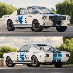 Shelby Mustang GT350R - Only 34 Was Produced and This Days Cost Almost $1,000,000
