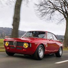 WEBSTA @ thealfacollection - Alfa Romeo Giulia Sprint GTA@car_vintage