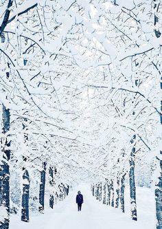 Reykjavik looks like a true Winter wonderland. Source: Courtesy of LindseyBurrus via Pinterest