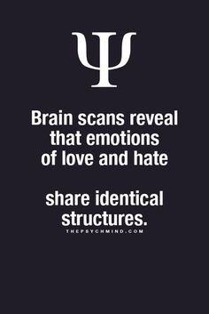Brain scans reveal that emotions of love and hate    share identical structures.