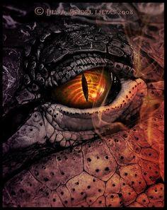 Dragon Eye!