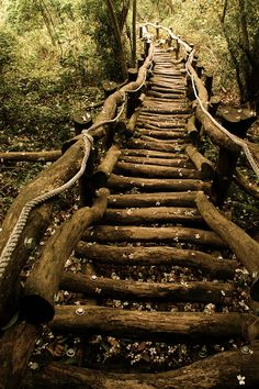 ideas log stairs outdoor stairways for 2019 Garden Stairs, All Nature, Stairway To Heaven, Land Art, Pathways, Stairways, Garden Paths, The Places Youll Go, The Great Outdoors