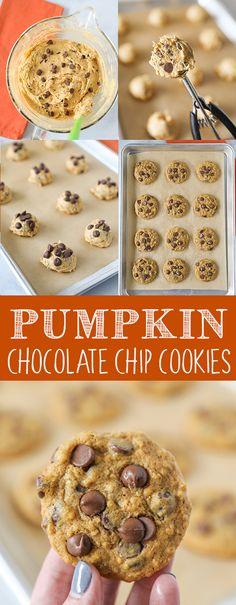 Pumpkin Chocolate Chip Cookies - the best pumpkin cookie recipe!