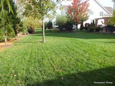 Making the most of a typical Winchester neighborhood .27 acre lot!