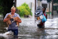 20 pictures to restore my faith in humanity