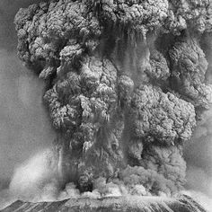 Proof the dust will settle. Photo Credit: Don Wilson/The Oregonian Repost ・・・ Forty years ago today, Mount St. Helens erupted, covering the Pacific Northwest in volcanic ash. Don Wilson, Jiu Jitsu Training, Jiu Jitsu Techniques, Volcanic Ash, Pacific Northwest, North West, Photo Credit, Amazing Photography, Earth