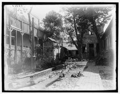 Title: Court of a typical residence, Port-au-Prince, Hayti, W.I. Related Names:     Detroit Publishing Co. , publisher Date Created/Published: [between 1890 and 1901] Medium: 1 negative : glass ; 8 x 10 in. Reproduction Number: LC-DIG-det-4a05450 (digital file from original) Rights Advisory: No known restrictions on publication. Call Number: LC-D4-8868 <P&P> [P&P] Repository: Library of Congress Prints and Photographs Division Washington, D.C. 20540 USA
