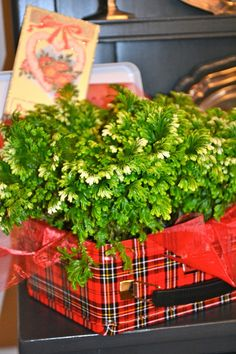 THE FRENCH HUTCH: TARTAN & FROLIC VALENTINE'S DAY TABLESCAPE