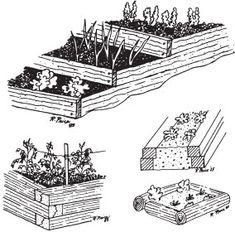 Intensive Gardening Methods - good info here