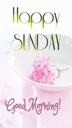 Happy Sunday Images, Good Morning, Morning Quotes, Blessed, Blessings, Allah, Van, Christian, Friends