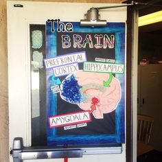 Bulletin board of parts of the brain based on the MindUp curriculum Classroom Walls, Classroom Themes, The Brain For Kids, Mind Up Curriculum, Emotion Recognition, Social Emotional Activities, Stem Classes, Magic School Bus, Mindfulness For Kids