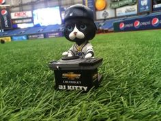 We shrunk Dj Kitty so you can take him home August 5th! Make sure you follow this cool cat on twitter @RaysDJKitty
