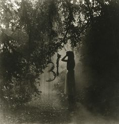 Samhain 2012   Ellen Rogers
