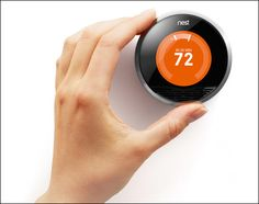 MiamiHal.com - Hal's Blog - Nest: Best Bang-For-The-Buck Home Improvement OutThere
