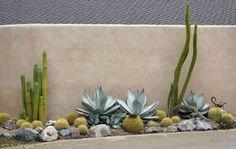 60 Stunning Desert Garden Landscaping Ideas for Home Yard - Cactus Succulent Landscaping, Landscaping Plants, Front Yard Landscaping, Landscaping Ideas, Desert Landscaping Backyard, Landscaping Edging, Landscaping Software, Modern Landscaping, Backyard Arizona