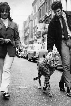 Tom Jones with Christine Spooner and feline friend, on their way to open a new boutique in London's Carnaby Street, 1965
