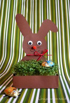 Kressehase / Herbal Bunny