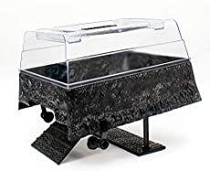 Best Turtle Tank Setup (Definitive Guide + Tank Reviews) Turtle Tank Setup, Turtle Dock, Turtle Habitat, Reptile Habitat, Tartaruga Aquatica, Turtle Aquarium, Aquatic Turtles, Red Eared Slider, Water Tank