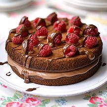 Chocolate Cake with Raspberries   WeightWatchers