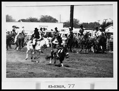 Rodeo Clowns, Photograph, n.d.; (http://texashistory.unt.edu/ark:/67531/metapth54250/ : accessed March 24, 2016), University of North Texas Libraries, The Portal to Texas History, http://texashistory.unt.edu; crediting Hardin-Simmons University Library , Abilene, Texas. (USA)