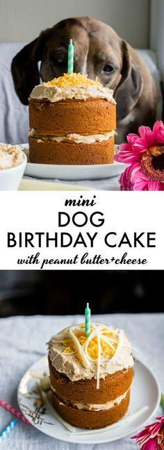 Mini Dog Birthday Cake