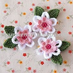 Free Crochet Flowers Patterns & Learn How to Crochet a Flower
