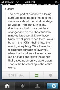 This is really the best feeling that exists.... I felt this way at my first 5sos concert... If only life was like this