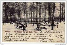 Bruxelles - Pont Rustique sous la neige, Bois de la cambre, l'hiver  Le 12 mars 1902  Cher monsieur - merci pour vos jolies cartes. J'en enverrai à la jeune fille dont vous me parlez  mille amitiés  C. de Backer