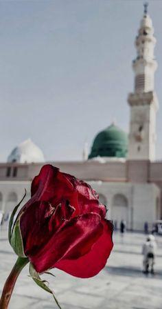 Quran Wallpaper, Mecca Wallpaper, Fairy Wallpaper, Islamic Quotes Wallpaper, Cute Disney Wallpaper, Aesthetic Colors, Flower Aesthetic, Mecca City, Mekka Islam