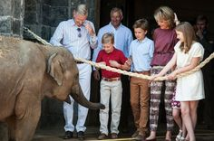 King Philippe and Queen Mathilde visited Pairi Daiza 3 juli 2015