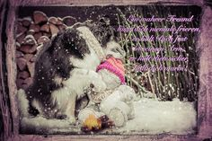 Ein wahrer Freund - oder ungeplante Fotos sind die besten ;-) Pictures, Real Friends, Animal Photography, Animales